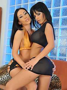 Stunning Brunette Lesbian Babes Licking Their Pussies and Nipple Sucking