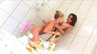 Sizzling Ladies Nipple Sucked Each Other in Bathroom
