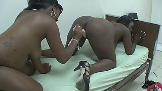 Ebony Babes Banged by Sex Toys in Bedroom